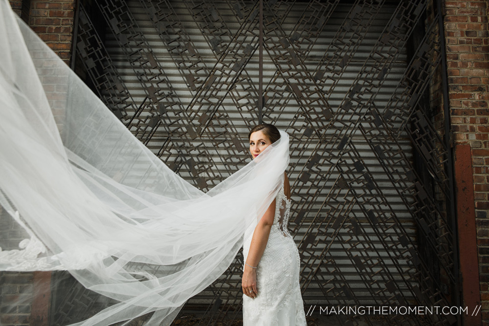 Cleveland Wedding Photographer Big Veil